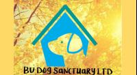 Bu dog sanctuary