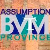 FRANCISCAN FRIARS ASSUMPTION BVM PROVINCE INC