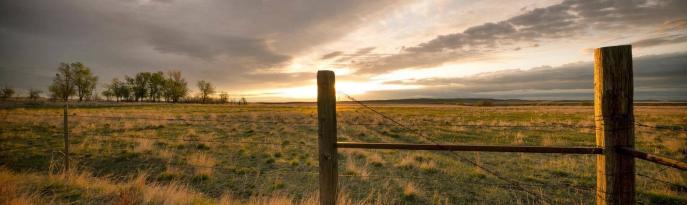Science Talks: Soil Heath Heroes in the Saginaw Valley